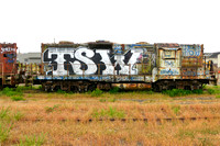 TSW (Graffitied Locomotive, Eureka CA)